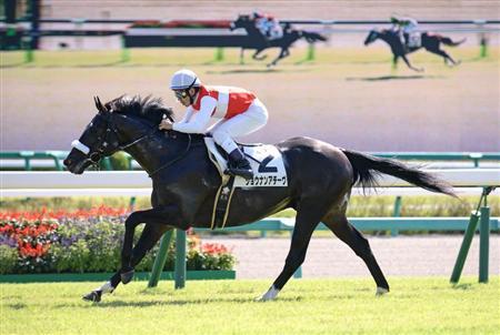 http://race.sanspo.com/keiba/images/20130930/pogb13093013160002-p1.jpg