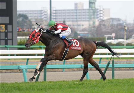 ウィンバリアシオン(日経賞) : 【競馬】2014年のG1戦線で存在 ...
