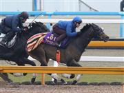 サンスポ杯阪神牝馬Sで中心を担うクイーンズリング。エリザベス女王杯馬の貫禄を見せつけるか