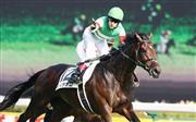 昨年のダービー馬で2017年の最優秀3歳牡馬に選出されたレイデオロ