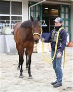 京都記念で並み居るGI馬を撃破したクリンチャー。阪神大賞典を制し、古馬長距離の主役へ躍り出るか